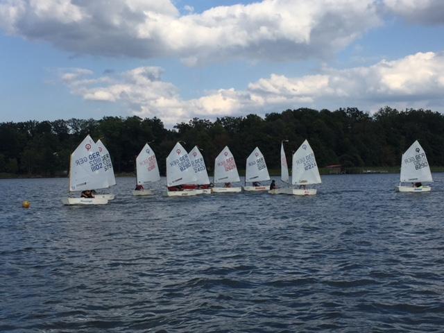 Viele Optis (ganz kleine Segelboote) an der Startlinie zu einer Wettfahrt auf dem Scharmützelsee
