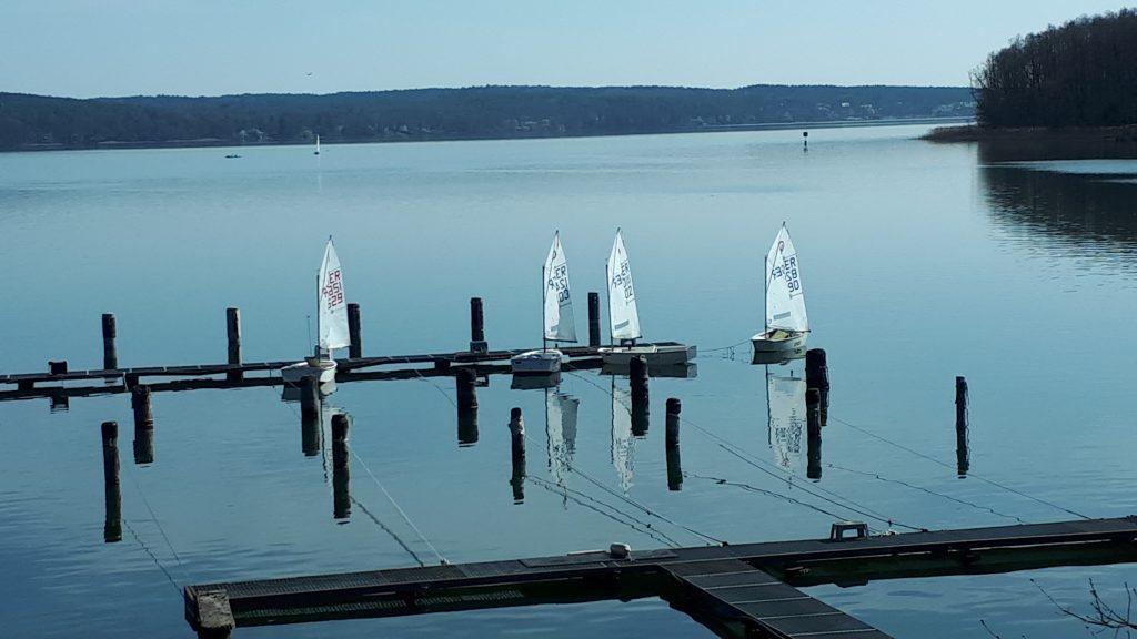 Optis im Hafenbecken